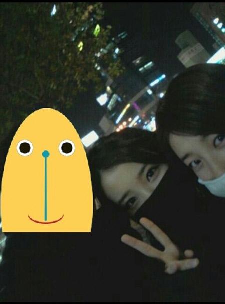 Fakta-fakta IU-Suzy~^^ | loveappleboy